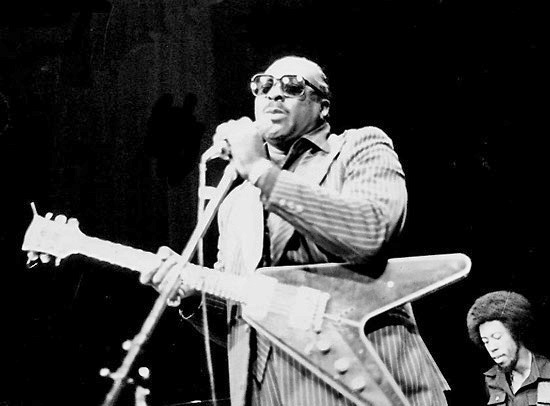 """Albert King"" by Original uploader was Melancholyblues at it.wikipedia Later version(s) were uploaded by Jacopo at it.wikipedia. - Transferred from it.wikipedia; transferred to Commons by User:Fale using CommonsHelper.. Licensed under CC BY-SA 2.0 via Commons - https://commons.wikimedia.org/wiki/File:Albert_King.jpg#/media/File:Albert_King.jpg"